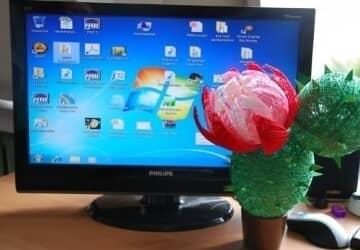 зачем кактус у компьютера